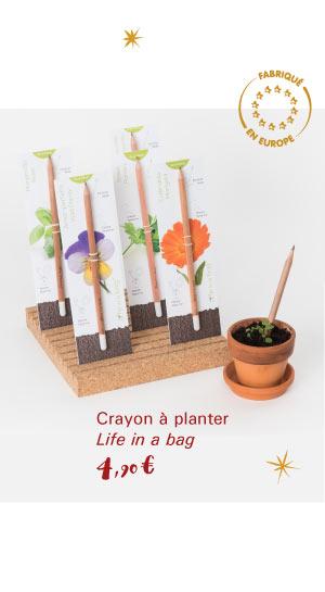 Crayons à planter