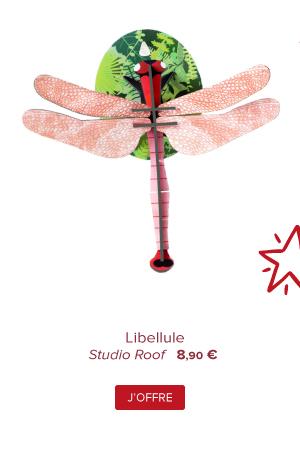 Libellule | Studio Roof